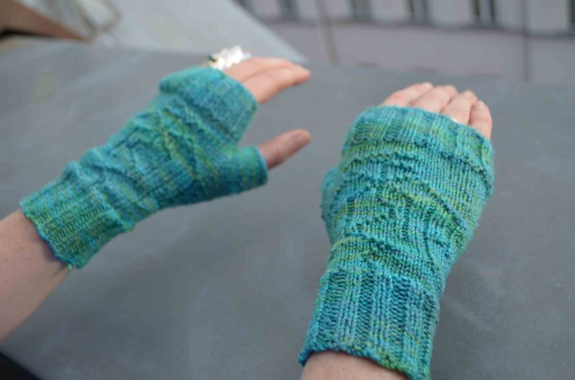 Big dragon mitts